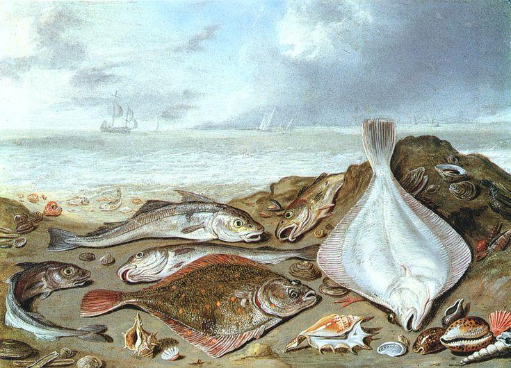 12 best Jan van Kessel images on Pinterest | Buns, Vans and Dutch ...