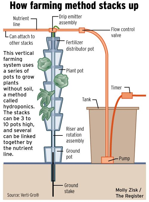 Vertical farm: Farmer takes crops to new heights with hydroponics. Molly Zisk