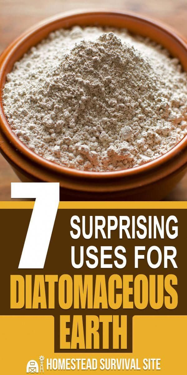 Diatomaceous earth is a versatile problem solver, useful