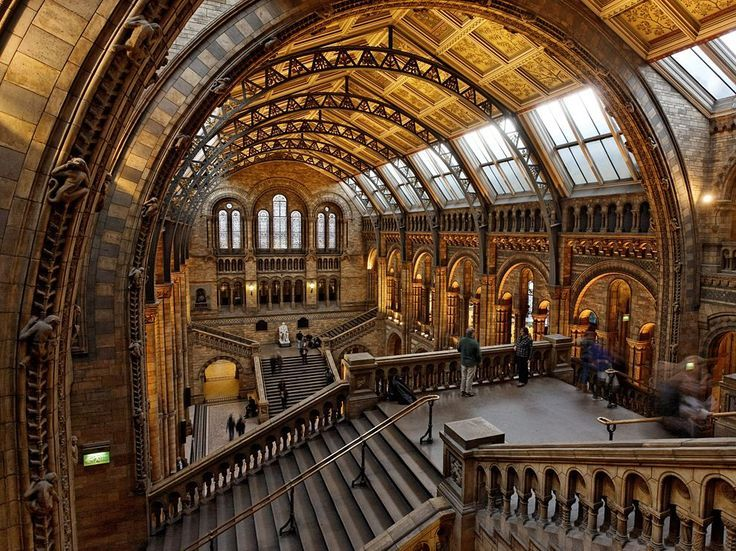 Foyer Museum Uk : The central hall of natural history museum london note
