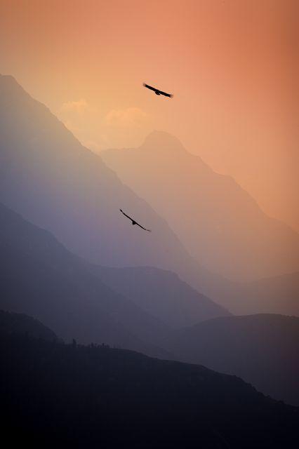 空を飛ぶ(インド)