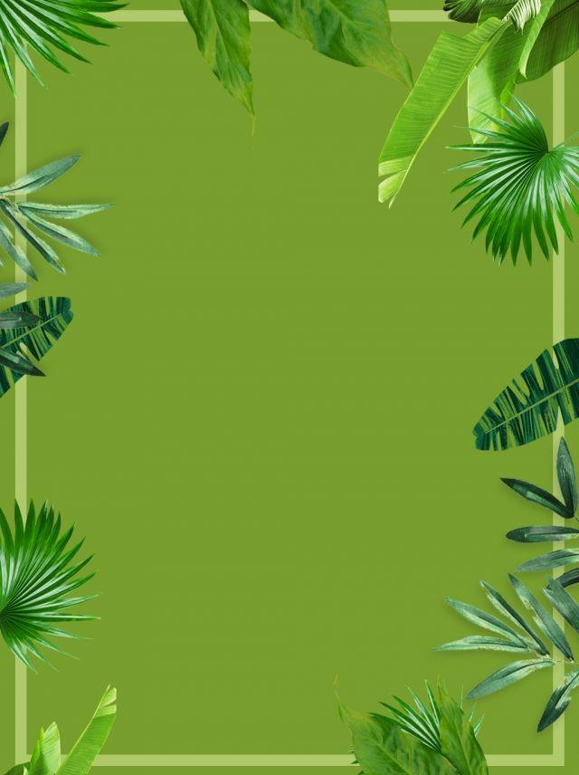 Green Leaf Universal Background Green Leaves Flower Background Wallpaper Aesthetic Green Wallpaper
