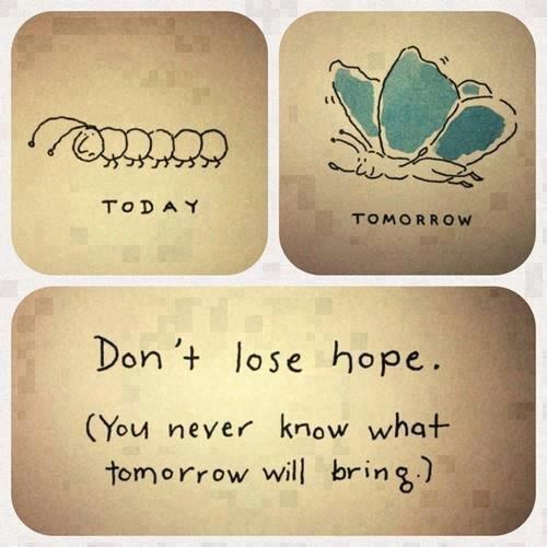 Don't lose hope.