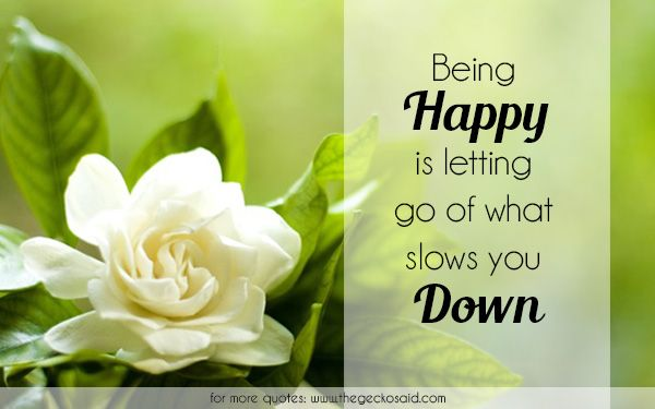 Being happy is letting go of what slows you down.  #down #go #happiness #happy #letting #quotes #slows  Website: http://www.thegeckosaid.com
