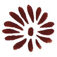 Peinture pochoir : paintstick terre de Sienne brûlée