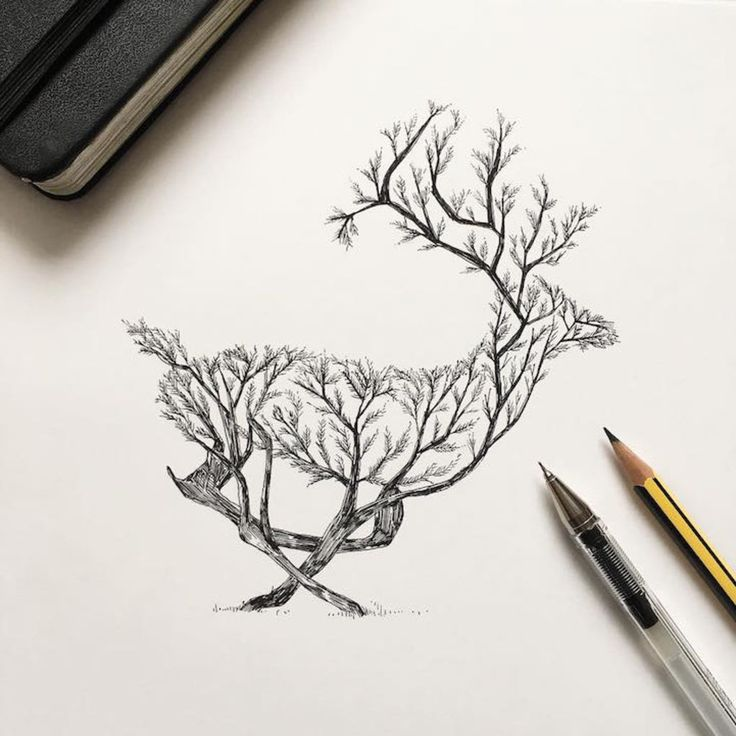 Natural Elements and Animals Fused Together in Intricate Pen  Drawings | BlazePress