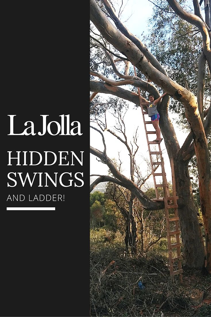 Hidden Swings and ladder in La Jolla, Southern California.