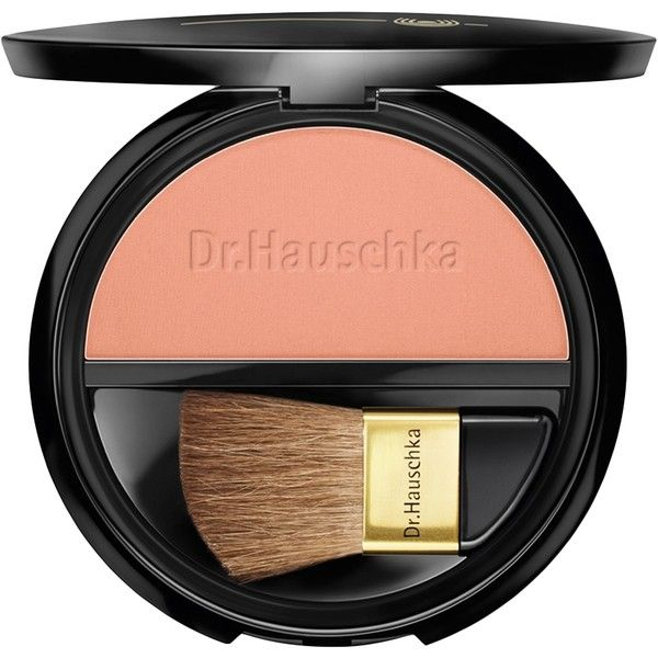 Dr. Hauschka Rouge Powder 02 - Desert Rose ($22) ❤ liked on Polyvore featuring beauty products, makeup, cheek makeup, blush, no color, powder brush, mineral blush, mineral powder brush and dr hauschka blush