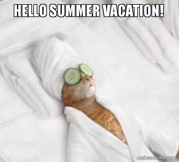 Hello Summer Be Your Best Teacher Teacher Memes Funny Teacher Memes Pamper Pets