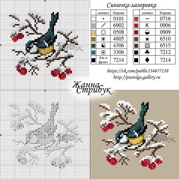 Winter bird chart