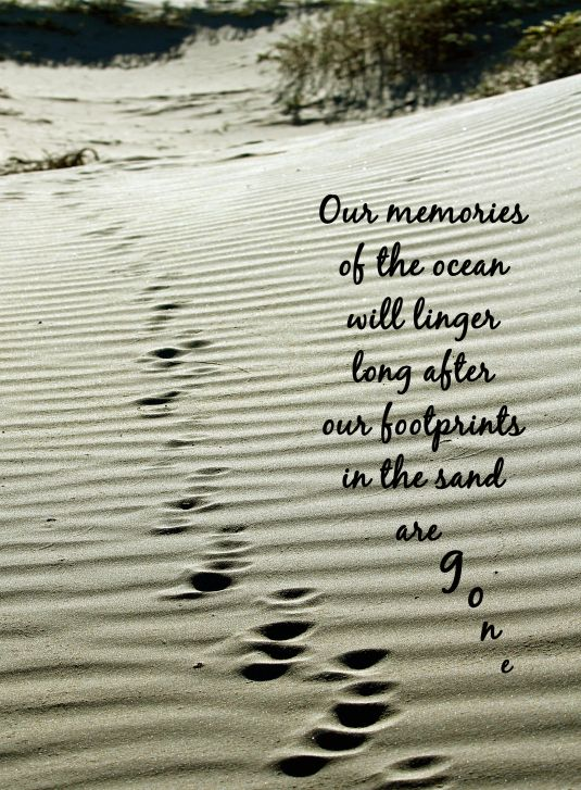 Nature quote about the ocean.