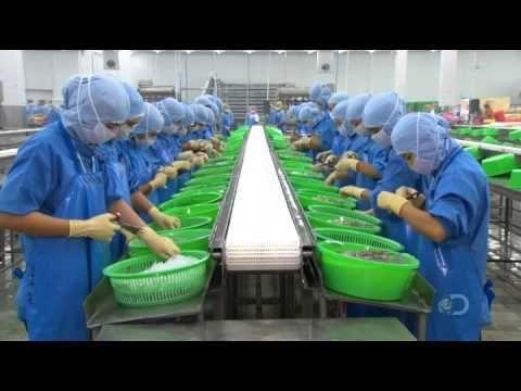 ▶ How It's Made - Fried Shrimp - YouTube