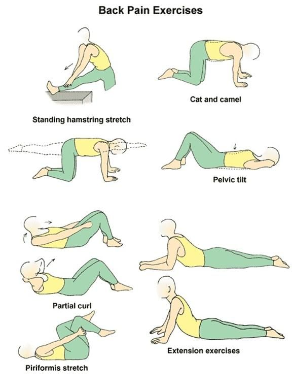Lower Back Pain Relief Stretches ... lower back pain ... Lower Back Stretches For Pain