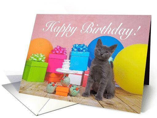 Gray kitten miniature party Happy Birthday card