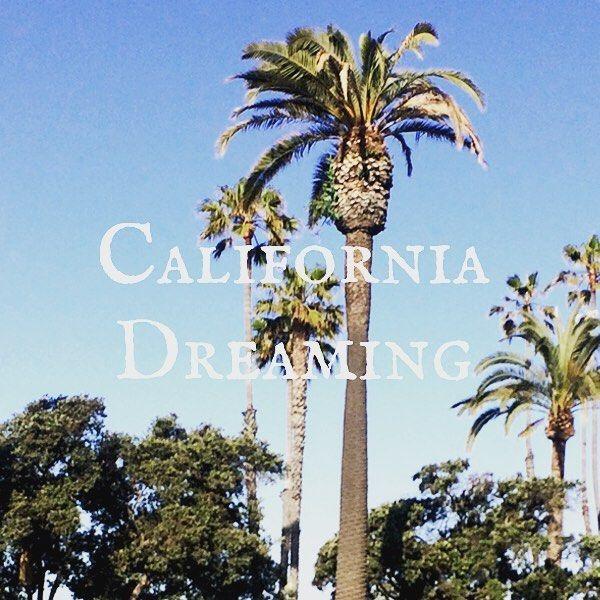 Neuer Blogpost über LA ist online ☀️ Link in Bio ☝️ #losangeles #lisasprachreisen #traveling #goodtimes #blogpost #palmtrees #californialove #traveller