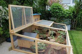 Ideas and tips for outdoor enclosures on the terrace – guinea pig platform – Meerschweinchen