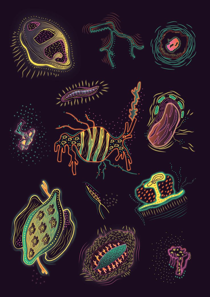 An #illustrated #chart exploring #strange #creatures #curious #mysterious #underwater #Glow #transparent #seacreatures