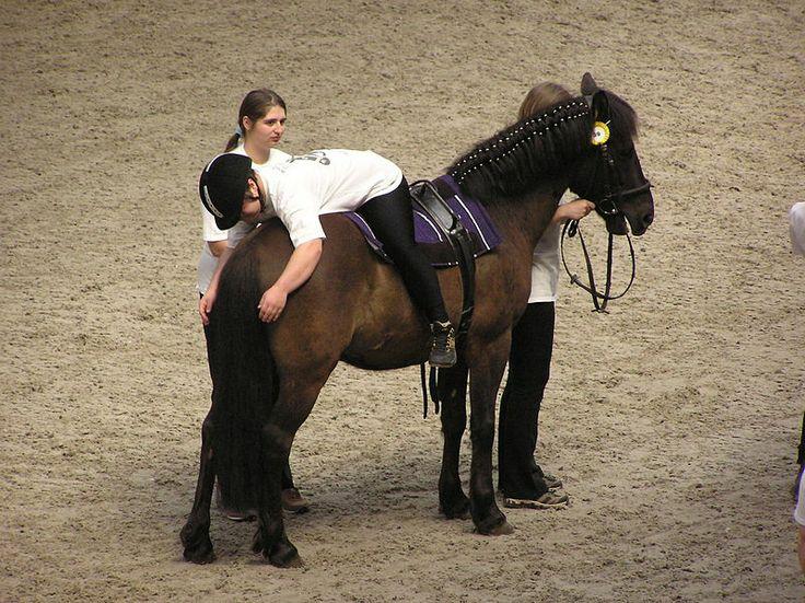 Soubor: Terapeutická jízda na koni 3.JPG