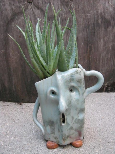 Huis: Kamerplanten *Houseplants   ~Succulent in pot met gezicht *face planter~