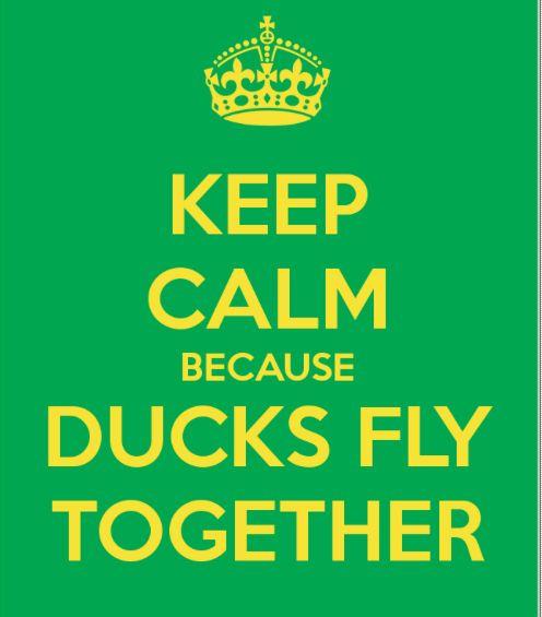Mighty Ducks @Megan Maxwell Martin Comeau @Annie Compean Shanton