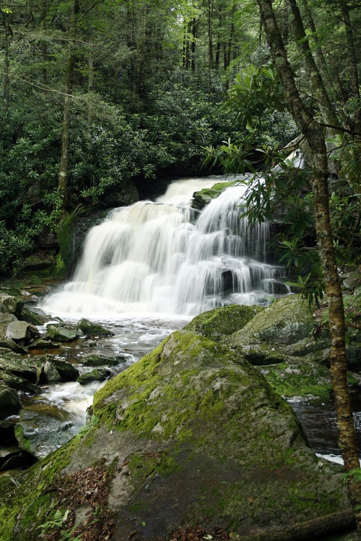 This gorgeous waterfall is just one of many that you can visit while hiking this incredible trail.