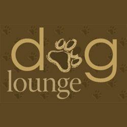Dog Lounge in Toronto