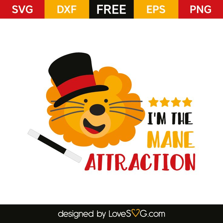 Im_the_mane_attraction_5865