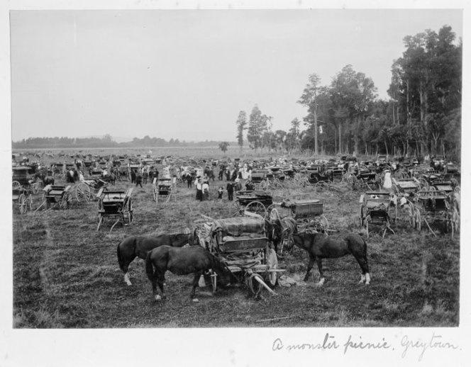 Carriages of picnic goers, Greytown, Wairarapa, Wellington region ca 1900.