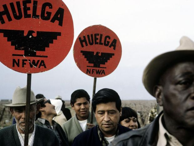 Cesar Chavez, leader of the National Farm Workers Association (NFWA), picketing outside of a farm to urge workers to join in the fight for better wages and workers' rights in California in 1966. (Photo by Paul Fusco/Magnum)