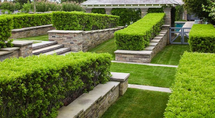 104 best images about nelson byrd woltz on pinterest for Nelson byrd woltz landscape architects