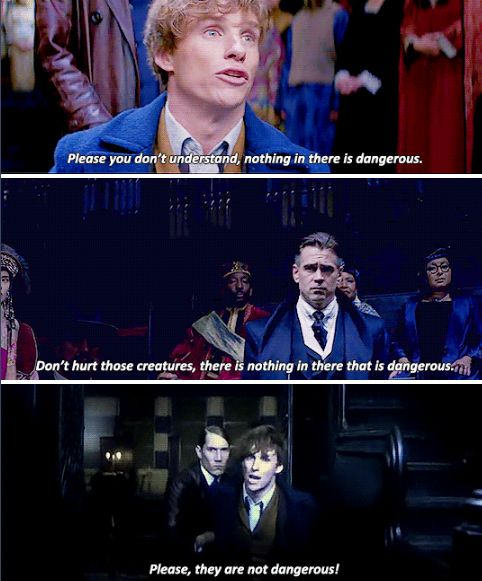 That heartbreaking moment where Newt is screaming and desperate to protect his Fantastic Beasts.