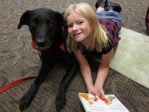Using Therapy Dogs as a Tool for Healing