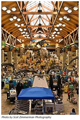 In-store Scavenger Hunt at Cabela's in Lehi | My Scout Stuff
