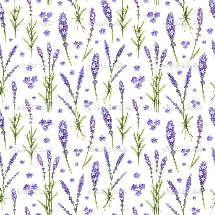 Иллюстрации цветов лаванды. Акварель бесшовный фон — стоковое изображение…