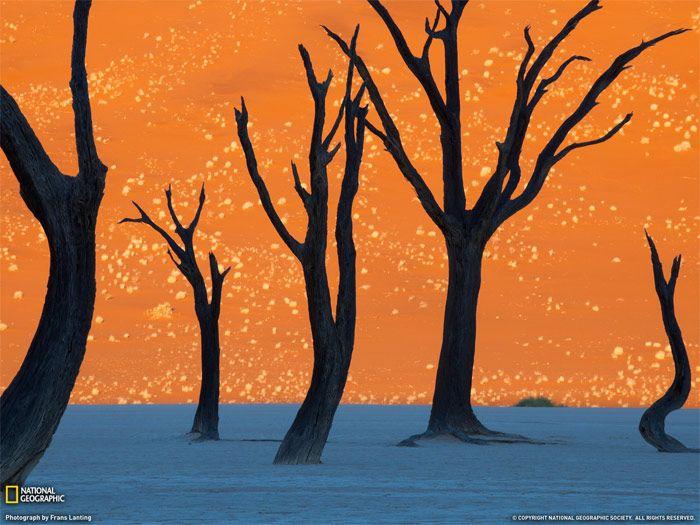 На фото — глиняное плато Соссуфлей в пустыня Намиб. В Намибии.