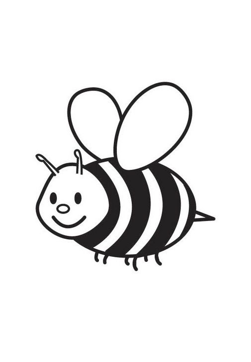 Small Bees The Fat