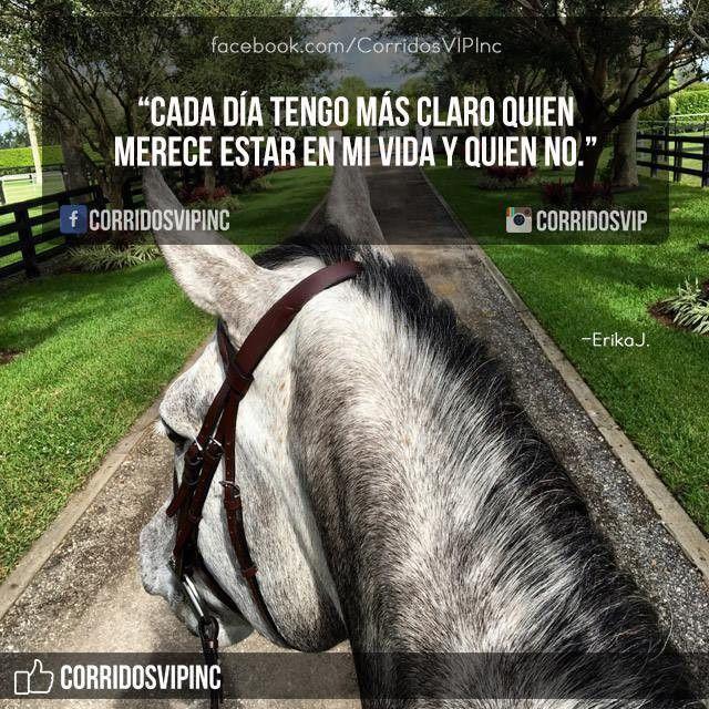Cada día mas claro.! ____________________ #teamcorridosvip #corridosvip #corridosybanda #corridos #quotes #regionalmexicano #frasesvip #promotion #promo #corridosgram