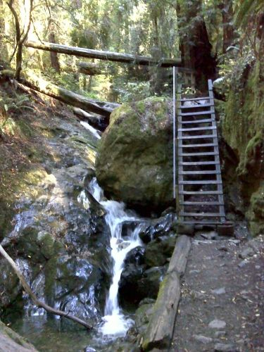 Hiking in Marin County.  Close to San Francisco, you can explore Marin Headlands with views of the golden gate bridge, or you can venture further inland and hike up to the top of Mount Tamalpais for a panoramic view of the entire bay area below