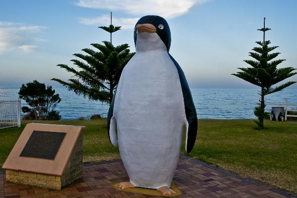 Big Penguin Statue in, well... Penguin of course! North West Coast of Tasmania. Article and photo by Carol Haberle for www.think-tasmania.com