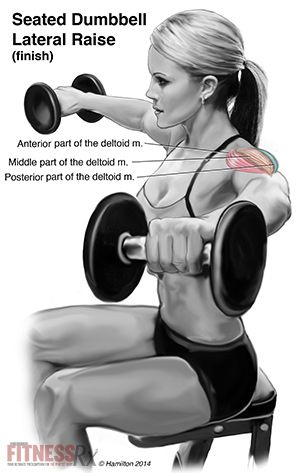 Seated Dumbbell Lateral Raises For Firm and Shapely Shoulders.