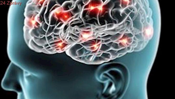 Jak nám zapomínání pomáhá pamatovat si a lépe přemýšlet