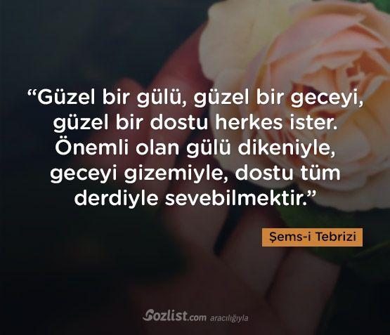 Güzel bir gülü, güzel bir geceyi, güzel bir dostu herkes ister... #şemsi #tebrizi #şems #sözleri #yazar #şair #kitap #şiir #özlü #anlamlı #sözler