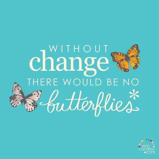 Without change there would be no butterflies - Erin Condren