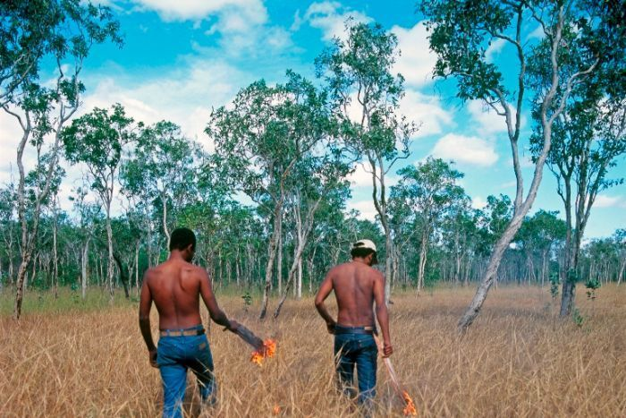 FIRE HAS BEEN USED IN INDIGENOUS LAND MANAGEMENT FOR THOUSANDS OF YEARS.