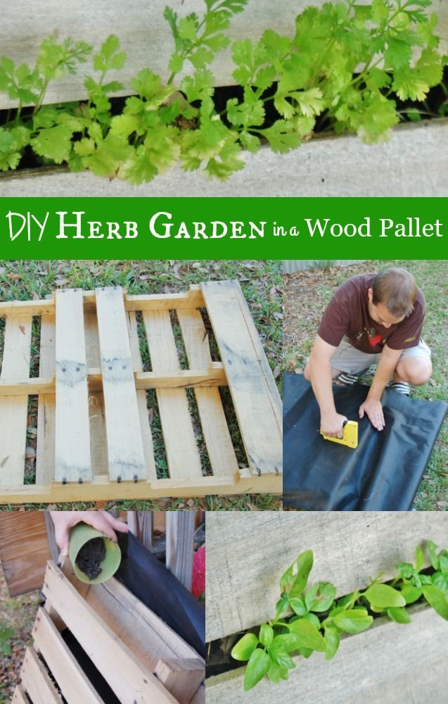 Diy herb garden with a recycled wood pallet patio for Wood pallet herb garden