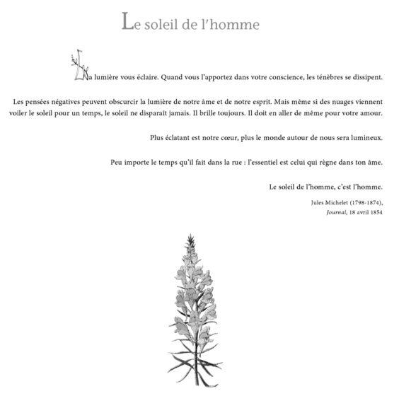 Le soleil de l'homme - Florilège de pensées positives - Svetlana Guyot