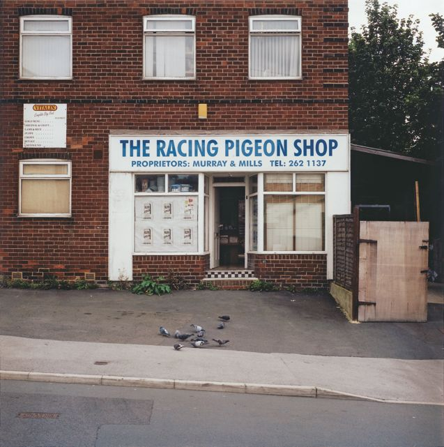 The Racing Pigeon Shop. #inspiration #places #uk