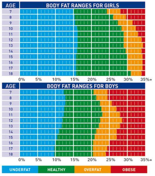 7 best Muscle Mass Chart, BMI, Bone Mass etc. images on Pinterest