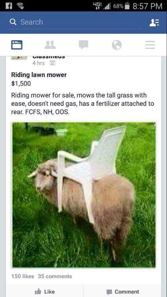 Riding mower for sale ad