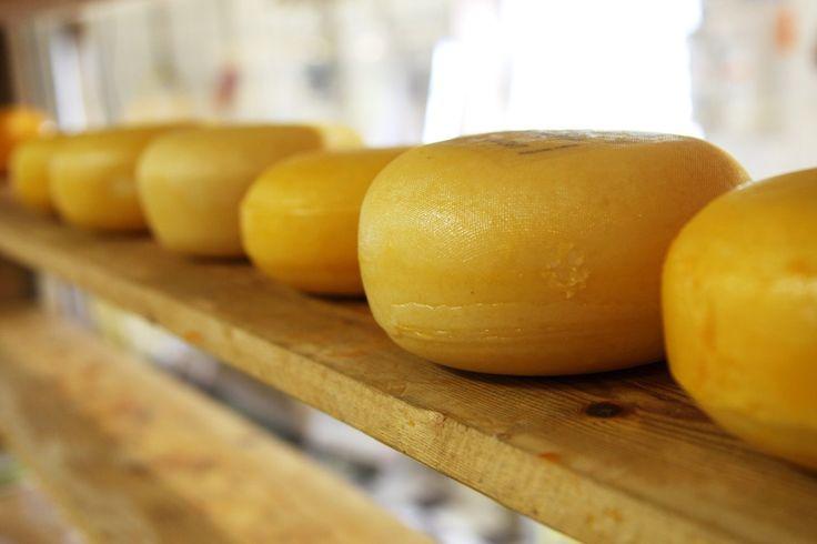 Jak zrobić ser Gouda w domu? Oto przepis na ser Gouda w kilku prostych krokach. Gouda to holenderskipół-twardy ser podpuszczkowy.